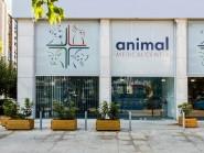 Animal Medical Center EE