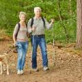 Καλοήθης υπερπλασία του προστάτη στο σκύλο