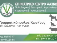 ΚΩΝΣΤΑΝΤΙΝΟΣ ΓΡΑΜΜΑΤΙΚΟΠΟΥΛΟΣ